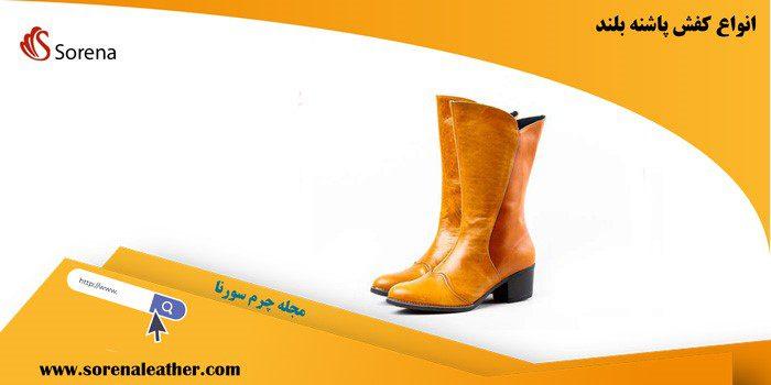 یکی از محبوب ترین مدل های کفش زنانه، کفش های پاشنه دار است.